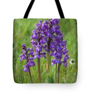 Green-winged Orchids Tote Bag