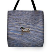 Green-winged Teal 5 Tote Bag