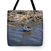 Green-winged Teal 7 Tote Bag