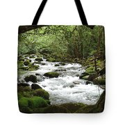 Greenbrier River Scene 2 Tote Bag