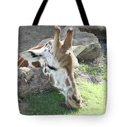 Greener Grass Tote Bag