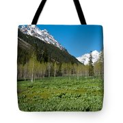 Greens And Blues Of The Maroon Bells Tote Bag