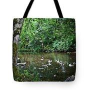 Greenwood Creek Tote Bag