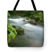 Greer Spring Branch 2 Tote Bag