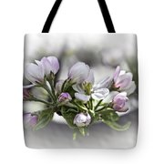 greeting card - Apple Blossoms  Tote Bag