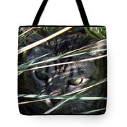Greeting Card - Joe Joe In The Grass Tote Bag