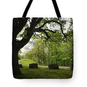 Greetng Another Spring Tote Bag