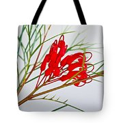 Grevilliea At Pilgrim Place In Claremont-california   Tote Bag