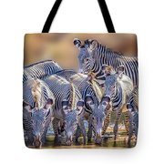 Grevy Zebra Party  7528 Tote Bag