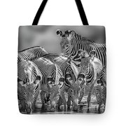 Grevy Zebra Party  7528bw Tote Bag