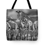 Grevy Zebra Party  7528bwc Tote Bag