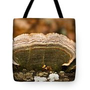 Grey Bracket Fungi Tote Bag