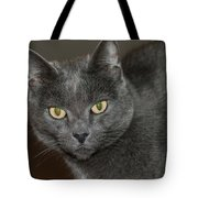 Grey Cat With Yellow Eyes Tote Bag