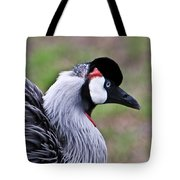 Grey Crowned Crain Of Africa 4 Tote Bag
