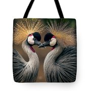 Grey Crowned Cranes Of Africa Tote Bag