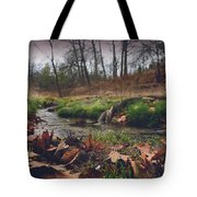 Grey Day In The Glen Tote Bag