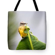 Grey Headed Tanager Tote Bag