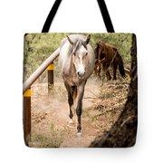 Grey Horse Tote Bag
