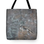 Grey In Snow Tote Bag