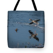 Grey Lag Goose Comes Into Land Tote Bag
