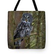 Grey Owl 3 Tote Bag