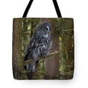 Grey Owl 4 Tote Bag