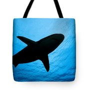 Grey Reef Shark Silhouette Tote Bag