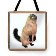 Grey Tabby Cat Tote Bag by Corey Ford