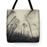 Grey Winds Bellow  Tote Bag