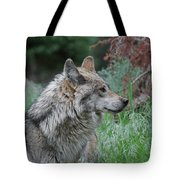 Grey Wolf Profile 2 Tote Bag