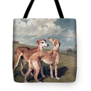 Greyhounds Tote Bag by John Emms