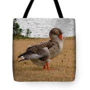 Greylag Goose 2 Tote Bag