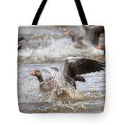 Greylag Goose Landing Tote Bag