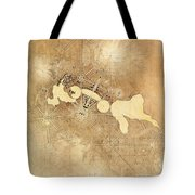 Griffin Plan Canberra 1912 Tote Bag