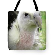 Griffins Vulture Eye To Eye Tote Bag