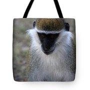 Grivet Monkey Tote Bag