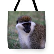 Grivet Monkey Ethiopia Tote Bag