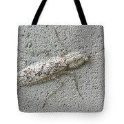 Grizzled Mantis  Tote Bag
