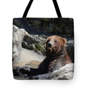 Grizzlies Snacking On Things They Find In A River Tote Bag