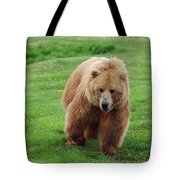 Grizzly Bear Approaching In A Field Tote Bag