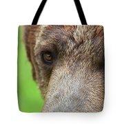 Grizzly Bear Arctos Ursus Tote Bag