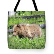 Grizzly Bear Cub In Yellowstone National Park Tote Bag