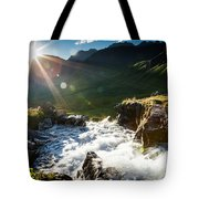 Grizzly Bear Falls Tote Bag