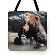 Grizzly Bear Licking His Paw While Seated In A Muddy River Tote Bag