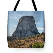 Grizzly Bear Lodge Tote Bag