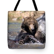 Grizzly Bear Plays In Water Tote Bag
