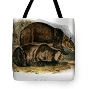 Grizzly Bear (ursus Ferox) Tote Bag