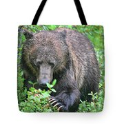 Grizzly Claws Tote Bag