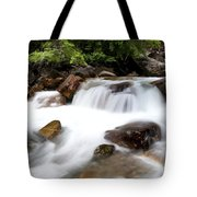 Grizzly Creek Tote Bag by Barry C Donovan