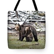 Grizzly Cub Holding Mother Tote Bag